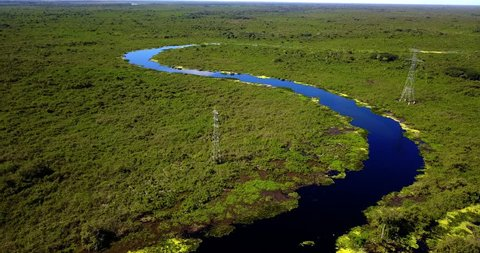 Meanders of the river. Forest vegetation. Riparian forest. Aerial image in the Pantanal Biome. Panoramic vertical from the top to the bottom. Mato Grosso do Sul state, Central-Western, Brazil.