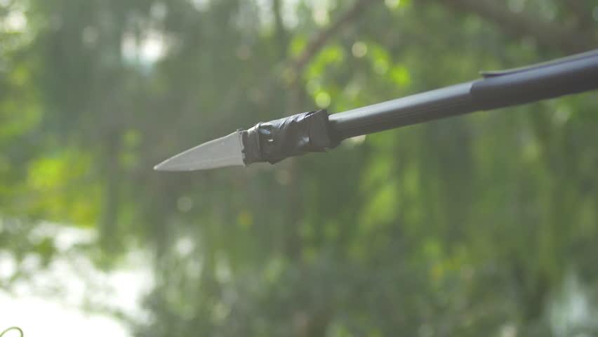 Header of spear