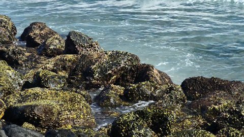 Waves hitting rocks on a tropical beach forming a splash shape. Powerful Waves on a rocky beach.