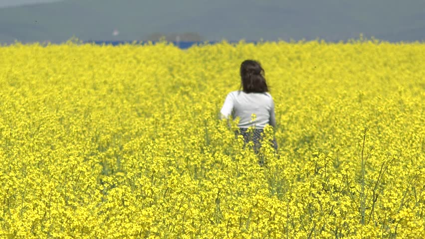 Young woman with back running in yellow rape field