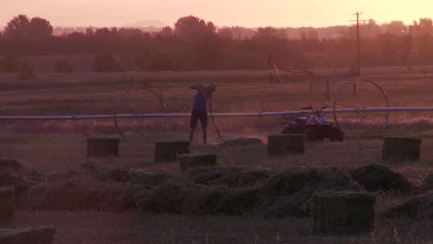 Sunset shot with hay bails and boy raking loose hay in distance