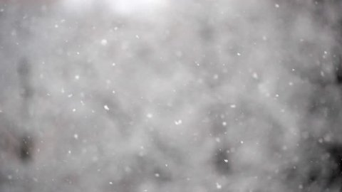 Winter snowfall. Snow Slow motion filmed at 50fps  outdoors on natural background.  Snowy weather during snowing winter day.Blurred abstract background.