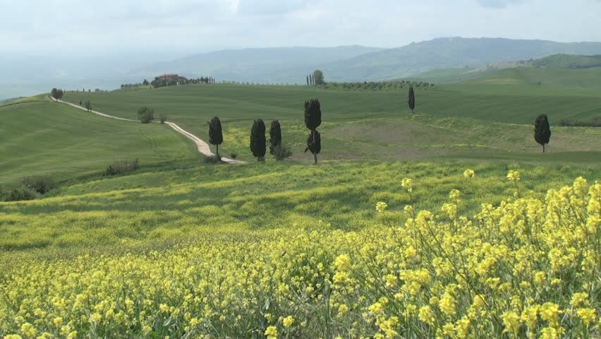 Typical landscape near Terrapille in Val d'Orcia in Tuscany, Italy #3382223
