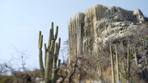tilt shift lens panoram with big calcium stalagmite and cactus, Mexico Hierve el Agua