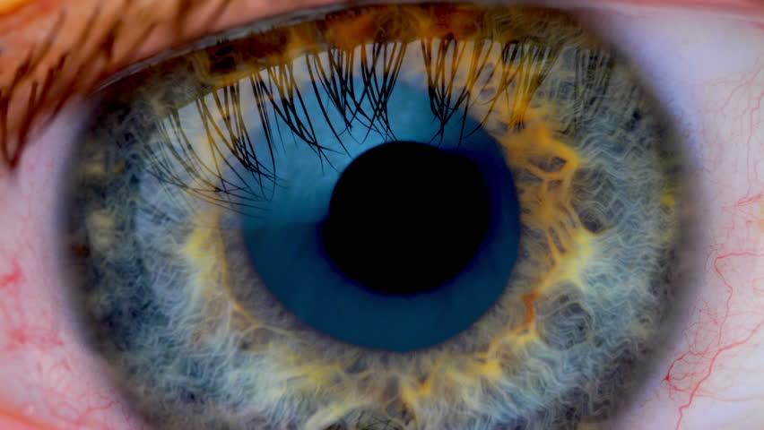 Human eye iris contracting. Extreme close up.  #34000648