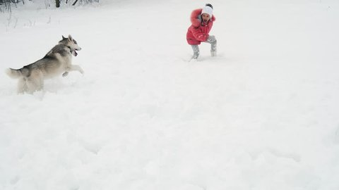 Young girl playing with siberian husky dog on the snow outdoors in slow motion.