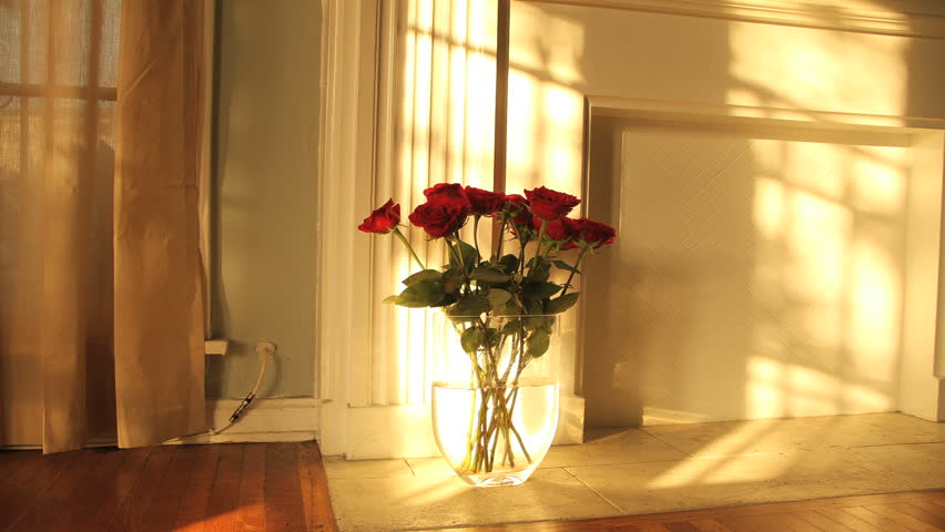 Amazing Golden Sunrise Timelapse Over Dozen Romantic Red Roses in Vase. Light dances across the mantle of a fireplace from sunny window. Can be flipped for Sunset.