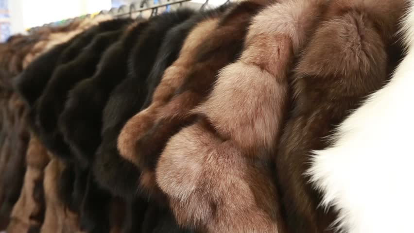 Luxury clothes and furs in a retail fashion store.
