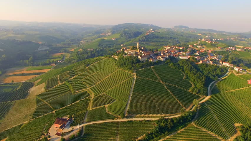 Aerial: flight over Italian town Castiglione Falletto surrounded with vineyards. Piedmont region, Italy.