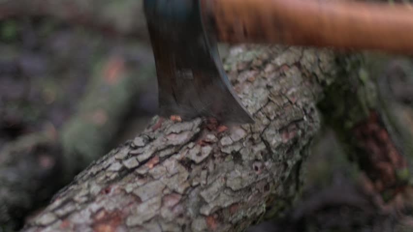 4k0023hitting Tree Trunk With Axe Chopping Wood With Blunt Blade