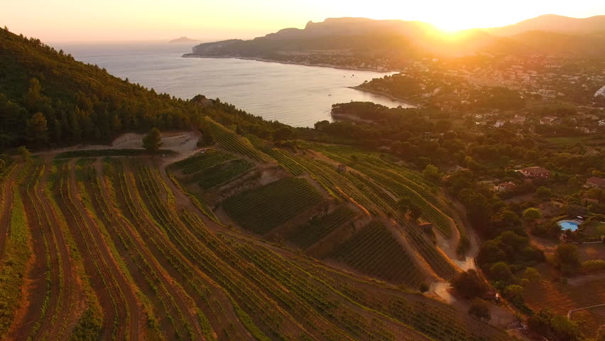 Aerial: French Riviera town Cassis just under some vineyards on the hill at golden sunset.