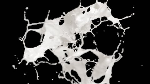 Cg animation of milk explosion on black background. Slow motion. Has alpha matte.