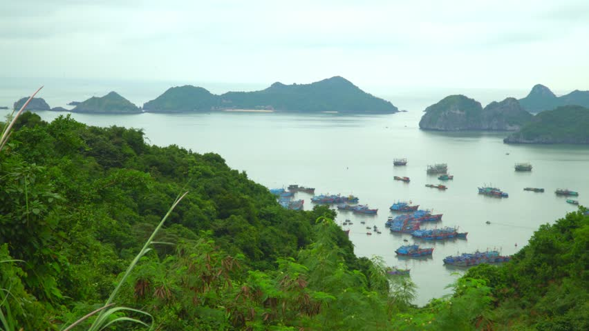 Vietnam. Beautiful traditional boats in a bay at the island. Open spaces of Vietnam. Islands of Cat Ba. Fisherman village and fishpond at Cat Ba island in Vietnam