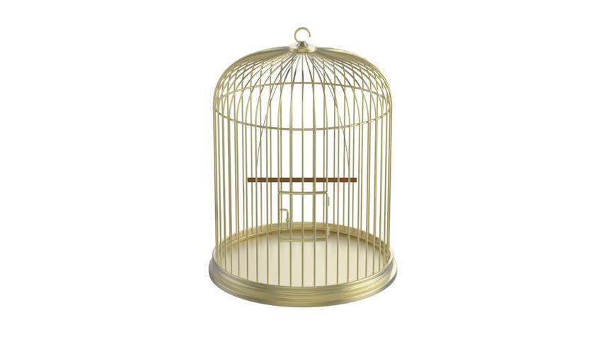 Golden bird cage rotates on white background