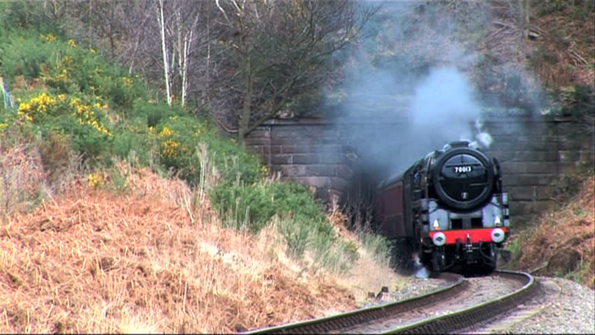 steam train emerging from the tunnel