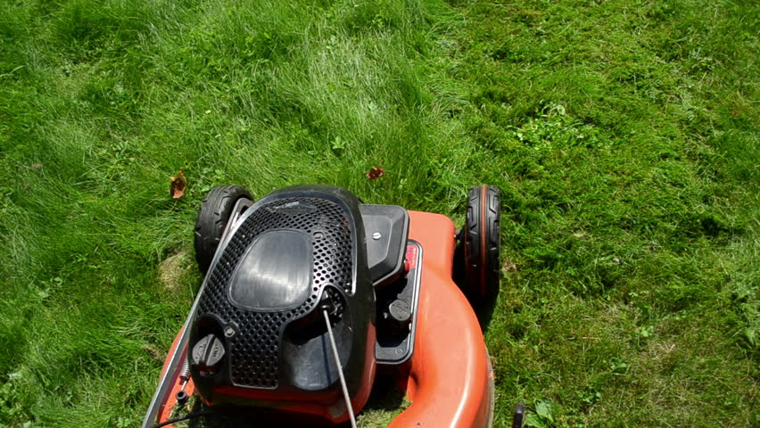 walk near move cut grass lawn mower cutter on garden meadow.