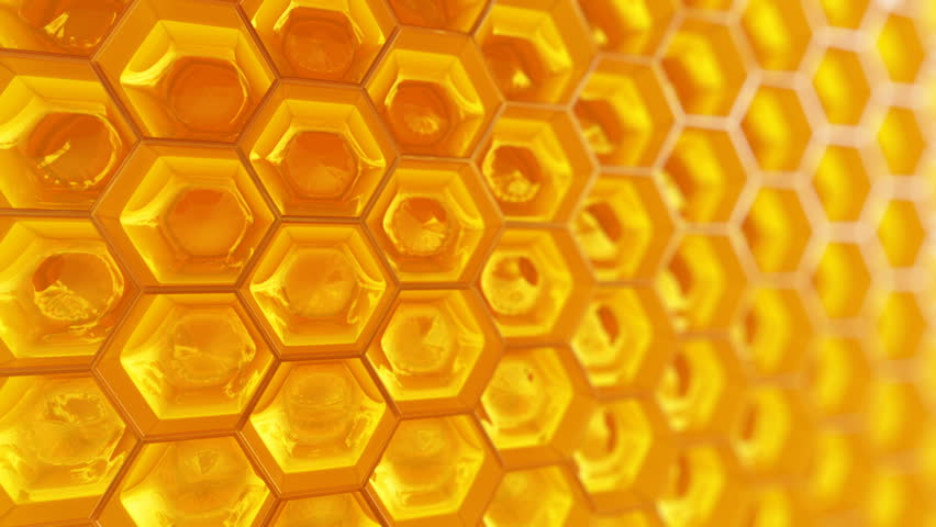Animation of fragment of honeycomb with full cells in bright sunlight.