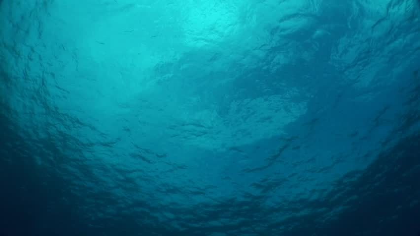 Ocean Surface from 60 Feet Stock Footage Video (100% Royalty-free) 3821315  | Shutterstock