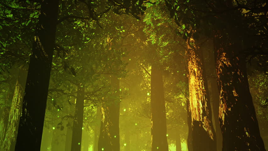 Deep Forest Fairy Tale Scene Fireflies 3D render