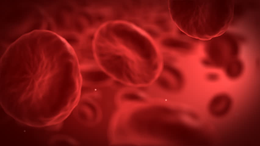 Red blood cells - part 2