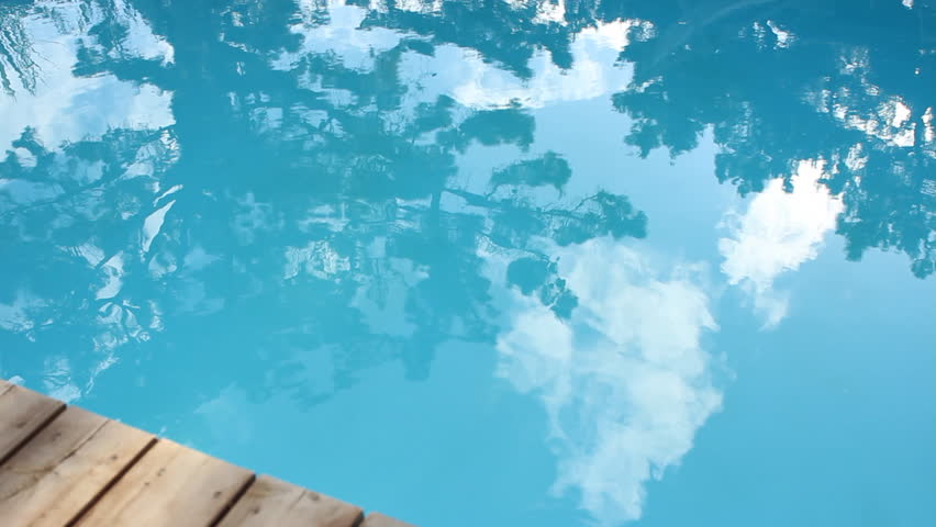 Trees reflecting in a salt water pool. - HD stock video clip