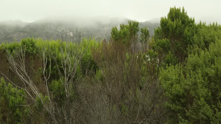 CALIFORNIA - JUNE 2013. Clouds and mist rolling over hills behind Santa Monica, LA. Only minutes from Los Angeles is stunning countryside.   Shutterstock HD Video #4082362