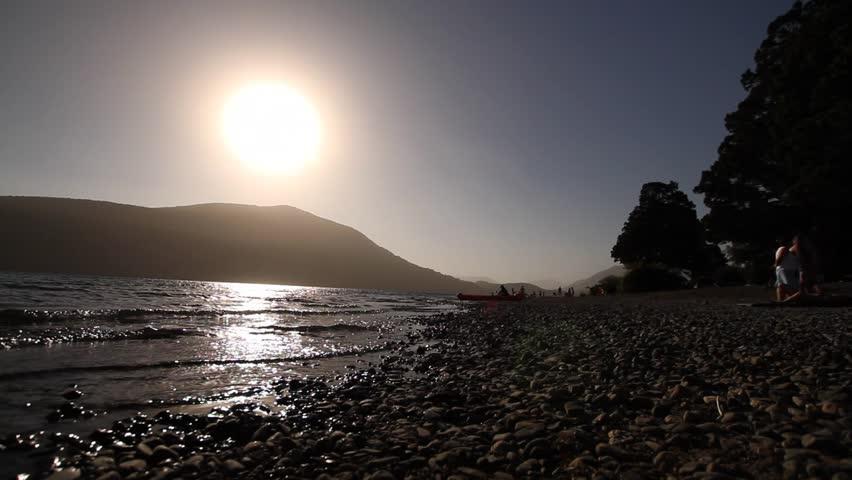 Dog playing on lake coast.