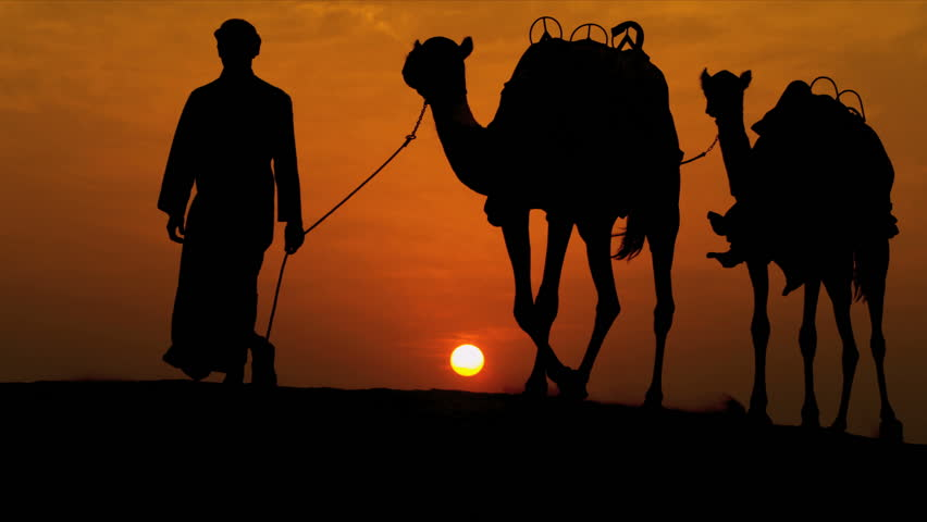 Arab male traditional headdress robe walking his camels over desert sand dunes silhouette sunset shot on RED EPIC | Shutterstock HD Video #4246493