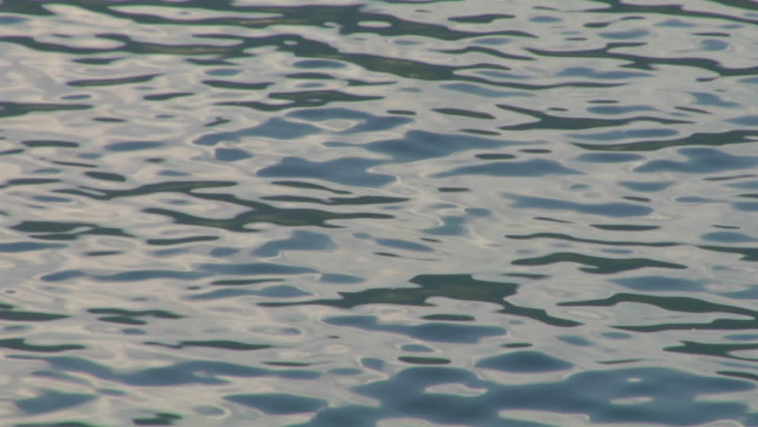 Calm Water Texture sunlight at sunset reflectedcalm water, with glimmering and