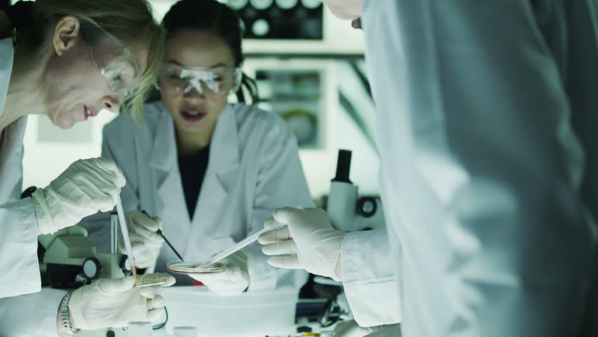 Diverse team of scientists or researchers are working together in a dark laboratory and discussing their work. In slow motion.   Shutterstock HD Video #4362128