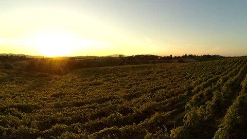 flying over chianti vineyard at sunset