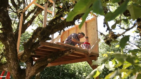 Father and son building tree house