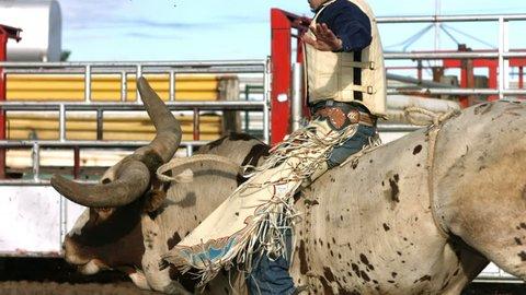 Bull riding, slow motion