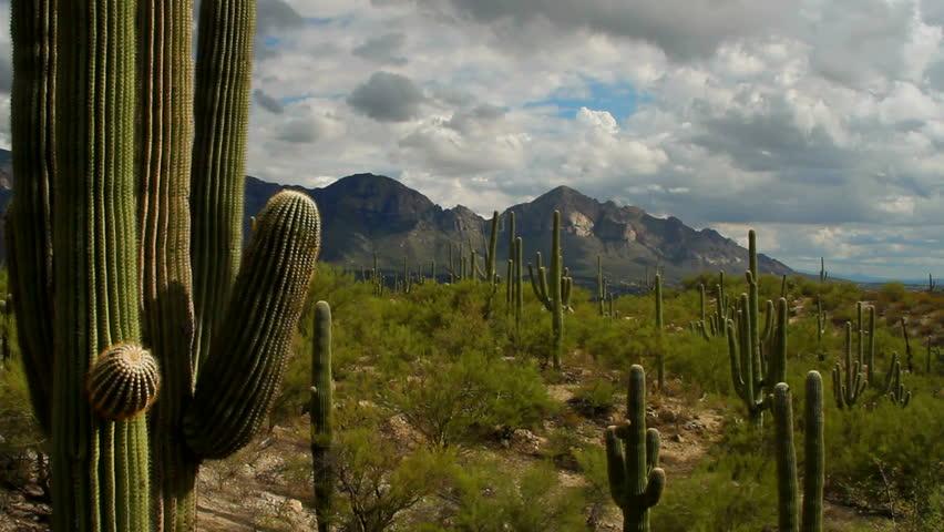 Time Lapse Light Sweeps Across Beautiful Arizona Desert