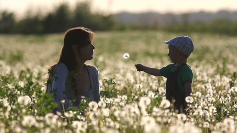 Sweet baby hold a dandelion in his hands give to mother, at sunset