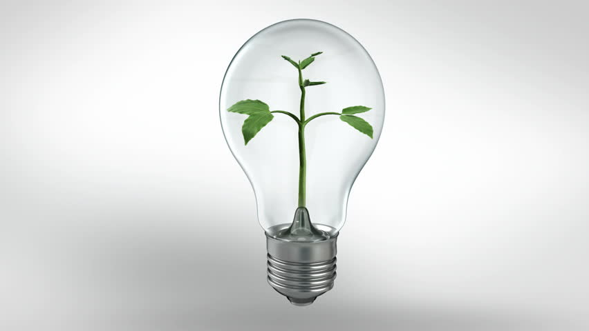 Animated Plant Growing In A Bulb. Green Energy Concept. Includes Alpha Chanel For Change The Background Image. Stock Footage Video 4773278 | Shutterstock & Animated Plant Growing In A Bulb. Green Energy Concept. Includes ... azcodes.com