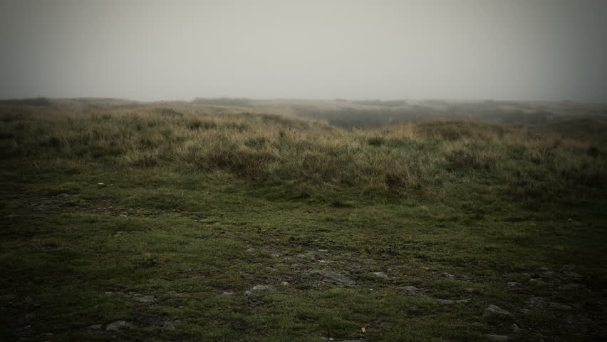 Misty Yorkshire Moor.