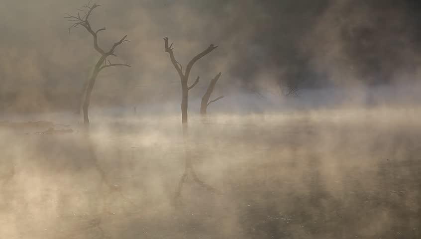 Jiulonghu, Zixi county in Fuzhou city, Jiangxi Province, China, mist in the autumn on lake surface | Shutterstock HD Video #4880138