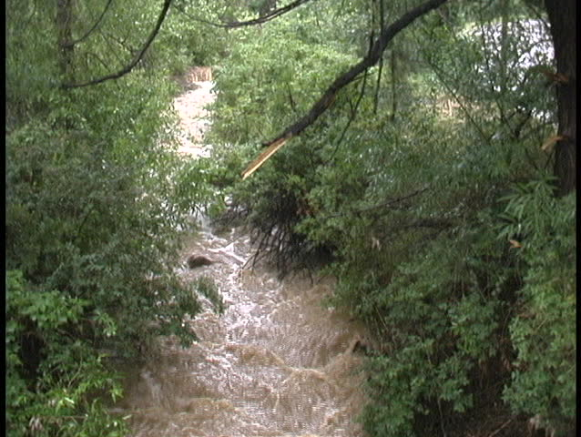 Heavy rains flood a stream with fast-moving, muddy water and a turbulent flow.