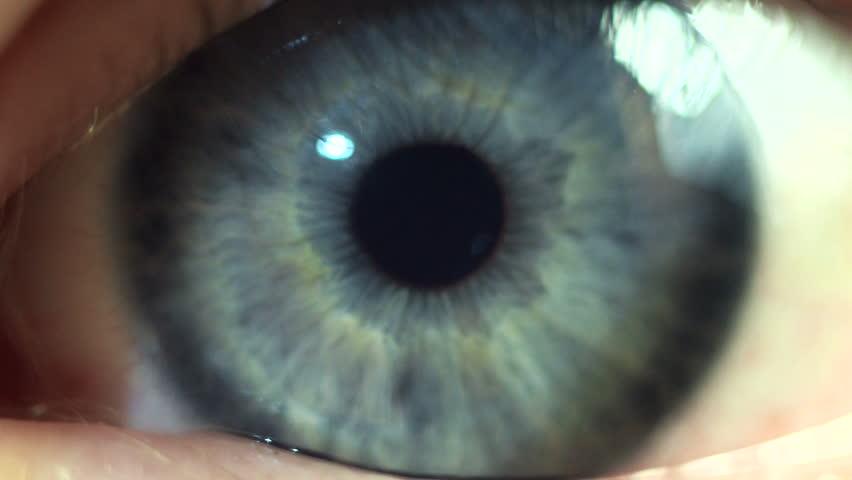 Kids eye close-up | Shutterstock HD Video #4917458