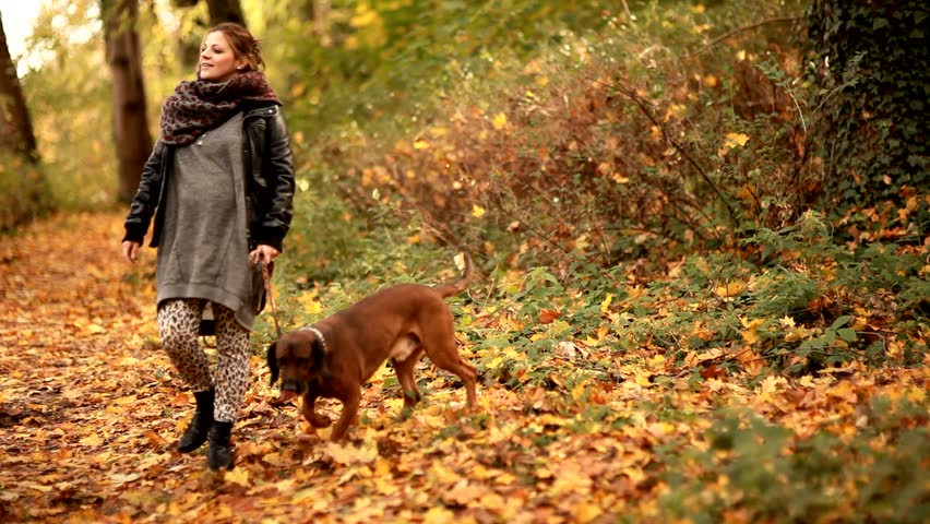 fashion woman walk with dog in park