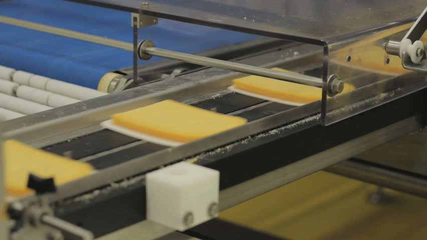 Cheese Factory - Assembly line | Shutterstock HD Video #5049998