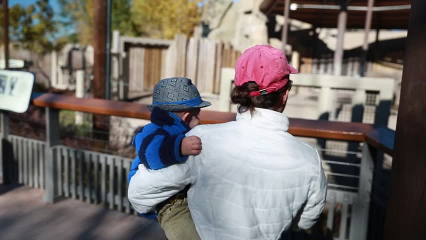A baby boy and his mother watching the elephants at the zoo   Shutterstock HD Video #5066498