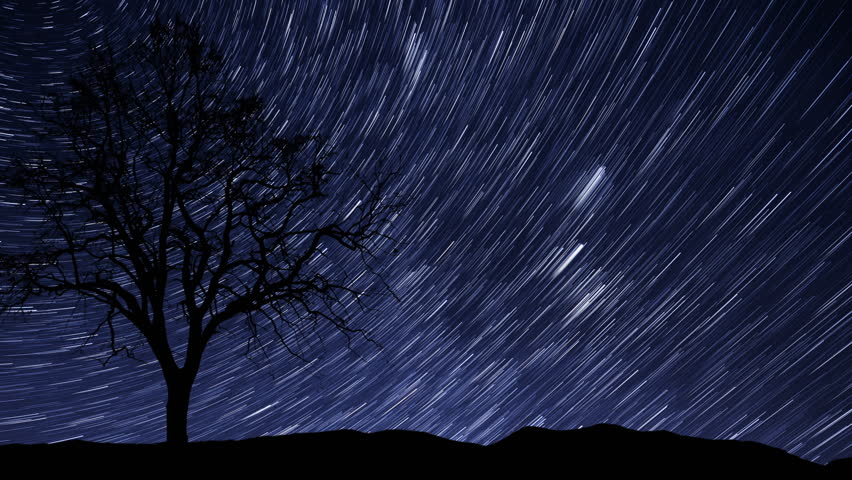4k UHD time lapse of a starry night with a shadow of a tree in foreground and with a star trail effect. 10941