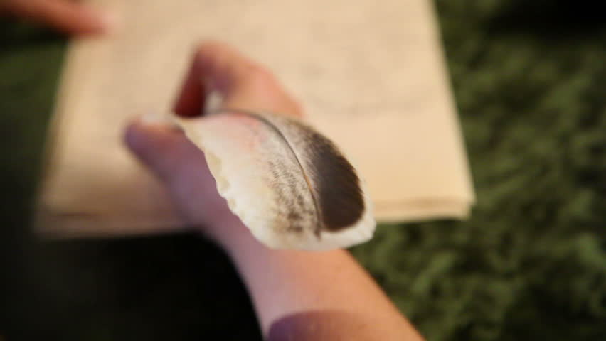 woman writes a letter with feather 1