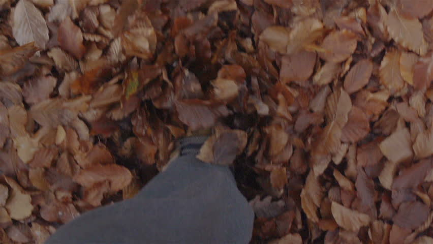 SLOW MOTION: Walking on dry leaves