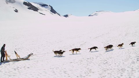 Alaska - July 2013: Aerial view of handler challenging his team of husky dogs as they pull sledge over mountain pass, USA, RED EPIC, 4K, UHD, Ultra HD resolution