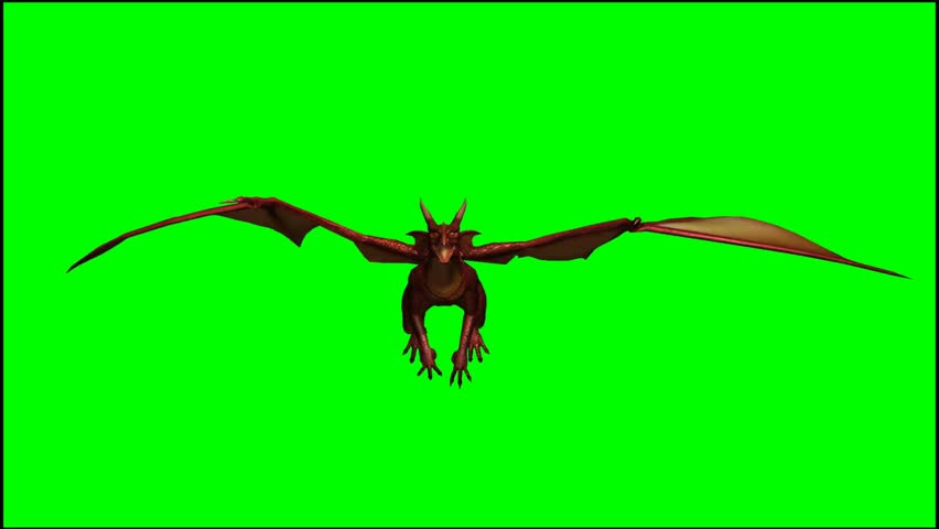 Dragon in Fly - Seperated Stock Footage Video (100% Royalty-free) 5428418 |  Shutterstock