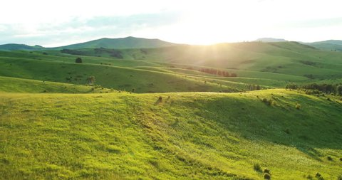 Aerial View. Sunset. Flight over a green grassy rocky hills. Altai Mountains, Siberia, Russia. Summer 2013