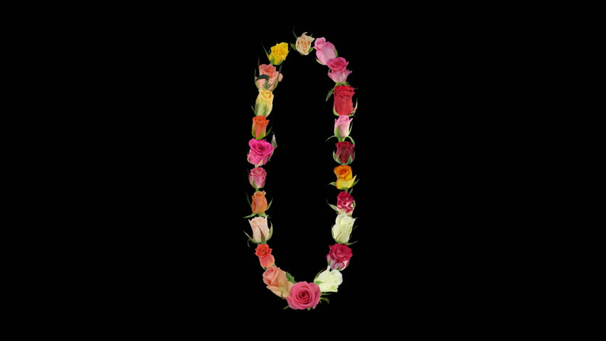 Montage opening rainbow roses number 0 shape alpha matte 0n  | Shutterstock HD Video #581458